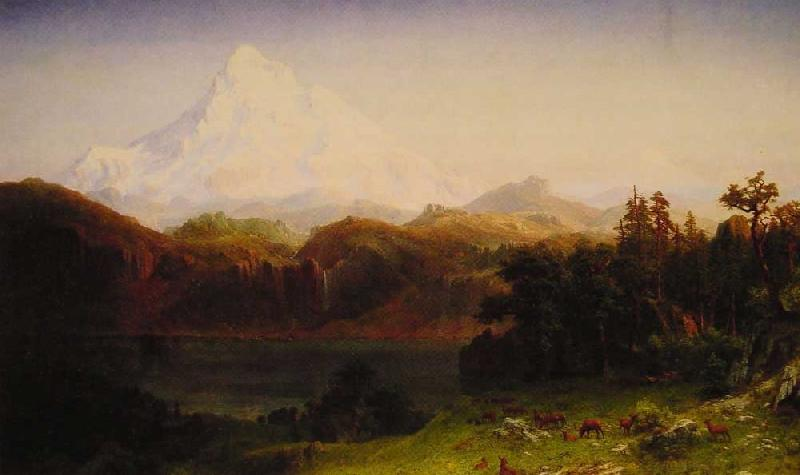 Albert Bierstadt Mount Hood, Oregon oil painting image